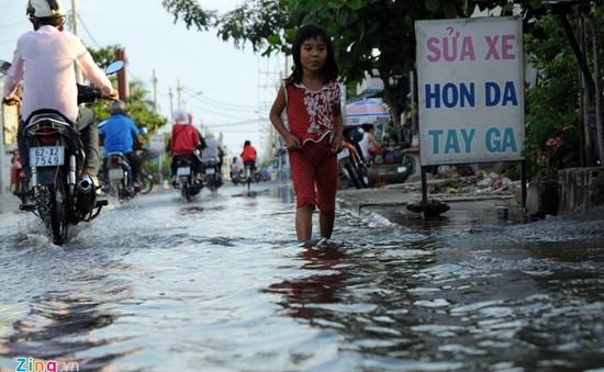 TP.HCM: Công trình chống triều cường gây ngập nhà dân