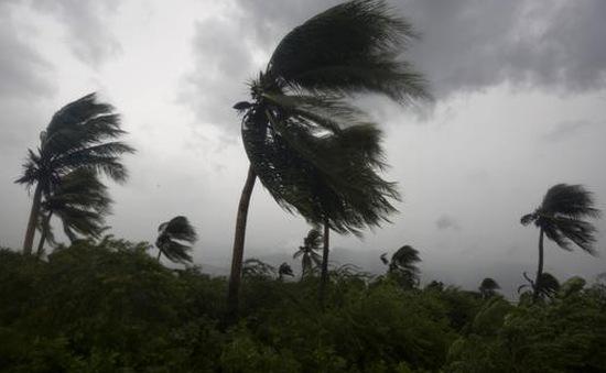 Tối 7/10, siêu bão Matthew đổ bộ vào Florida (Mỹ)