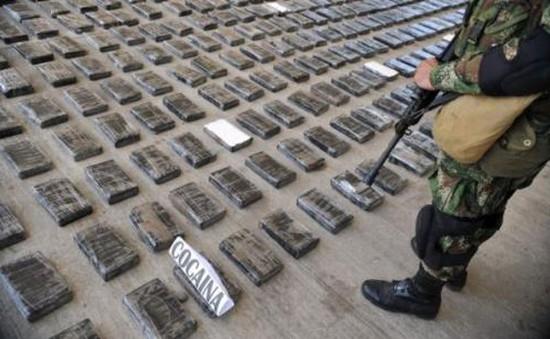 Colombia tịch thu hơn 1 tấn ma túy