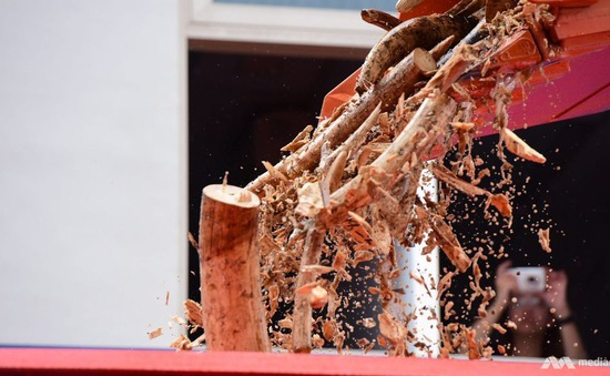 Singapore tiêu hủy gần 8 tấn ngà voi
