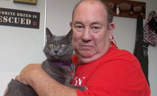 Chú mèo bất ngờ trở về nhà sau 11 năm đi lạc