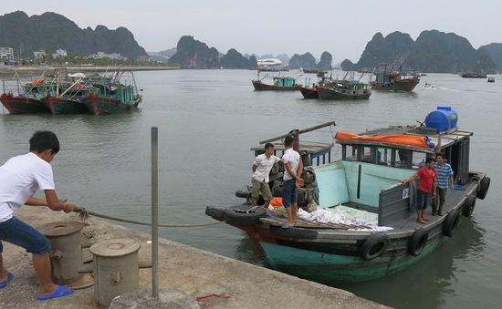 Gió cấp 6 – 7 tại vùng biển Bạch Long Vỹ, Quảng Ninh