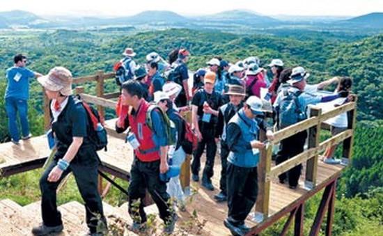 """Tìm thêm 9 người Việt """"mất tích"""" trên đảo Cheju, Hàn Quốc"""