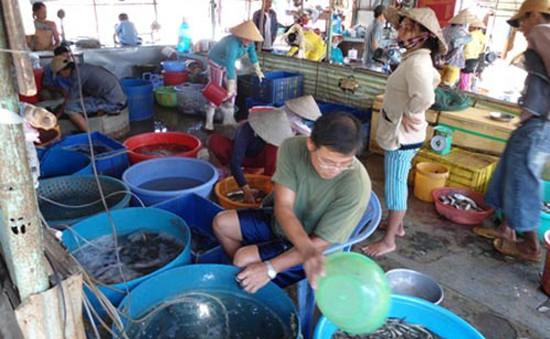 Đồng Tháp: Chợ cá đồng Trường Xuân tấp nập mùa nước nổi