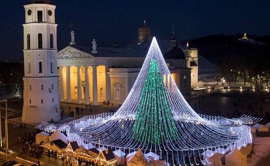 Chiêm ngưỡng những cây thông Noel rực rỡ nhất thế giới