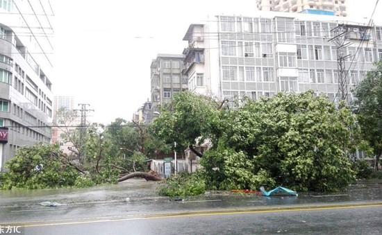Ít nhất 7 người thiệt mạng do siêu bão Meranti tại tỉnh Phúc Kiến (Trung Quốc)
