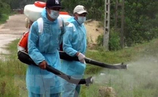 Đã xác định nơi ở và làm việc của bệnh nhân Hàn Quốc nhiễm Zika tại Việt Nam