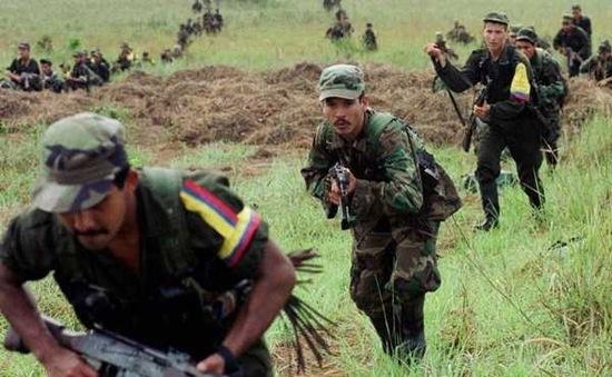 Mỹ cân nhắc đưa FARC ra khỏi danh sách khủng bố