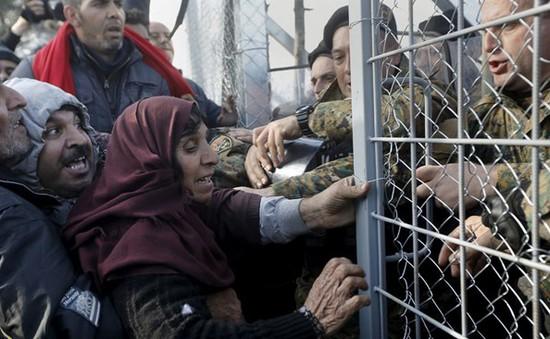 Khủng hoảng người tị nạn tại Hy Lạp cận kề đỉnh điểm bế tắc