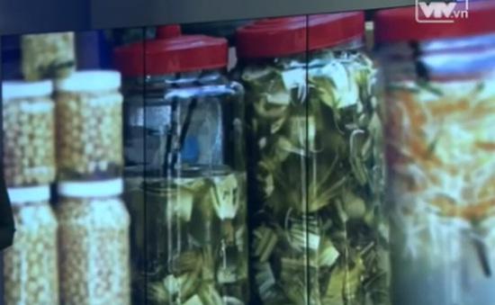 Phú Yên: Phát hiện cơ sở sản xuất dưa cải có chất vàng ô
