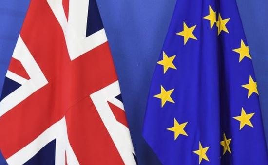 Lãnh đạo các nước lo ngại việc Anh rời khỏi EU