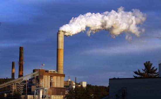 Câu chuyện về định giá carbon tại Việt Nam