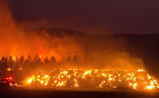 California (Mỹ) ban bố tình trạng khẩn cấp vì cháy lan rộng