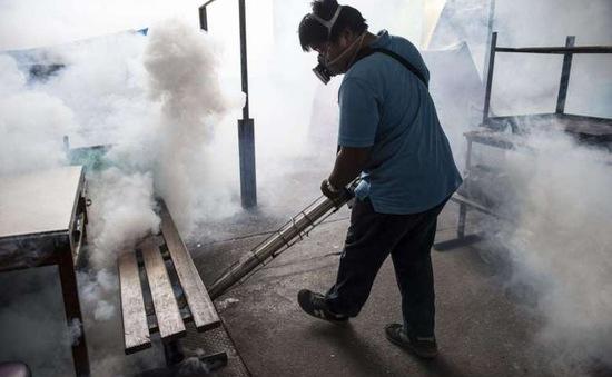 Myanmar ghi nhận ca nhiễm virus Zika đầu tiên