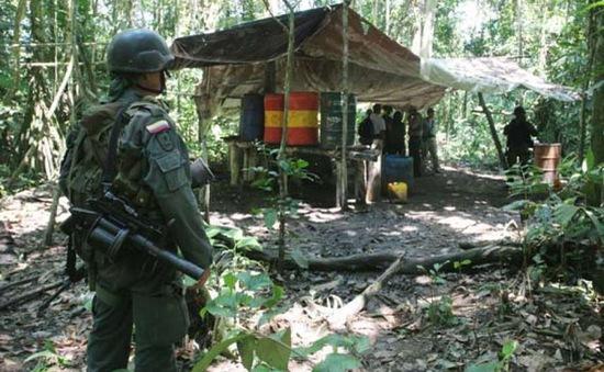 Colombia phá hủy hơn 100 trung tâm pha chế cocaine trong rừng