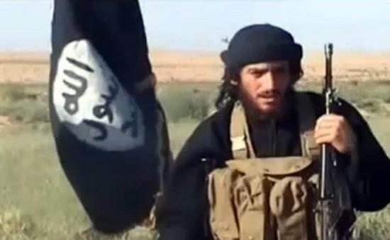 Mỹ xác nhận thủ lĩnh cấp cao của IS bị tiêu diệt