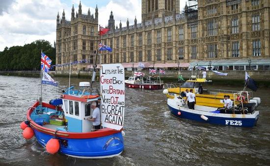Dong buồm dọc sông Thames ủng hộ Brexit tại Anh