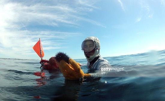 Làng nữ thợ lặn ở tỉnh Mie, Nhật Bản