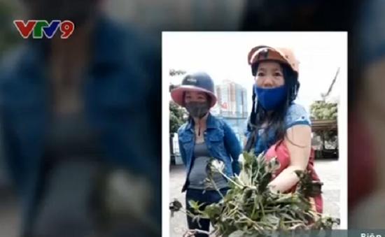 Bà Rịa - Vũng Tàu: Rò rỉ khí amoniac ra khu dân cư