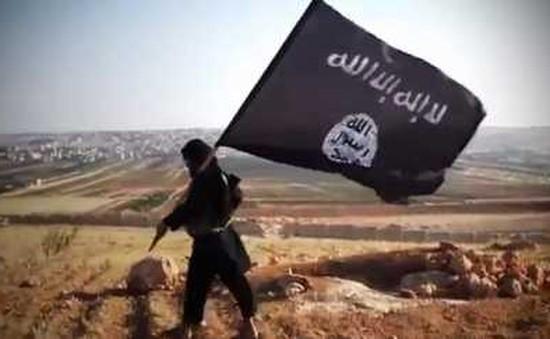 Ấn Độ đóng cửa hơn 90 website liên quan tới IS
