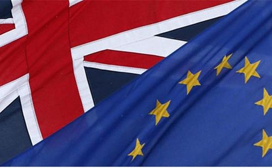 Phe ủng hộ Anh ở lại EU đang dẫn trước với 51%