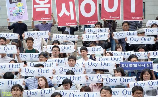 Chính phủ Hàn Quốc bị kiện vì bê bối sản phẩm diệt khuẩn gây chết người