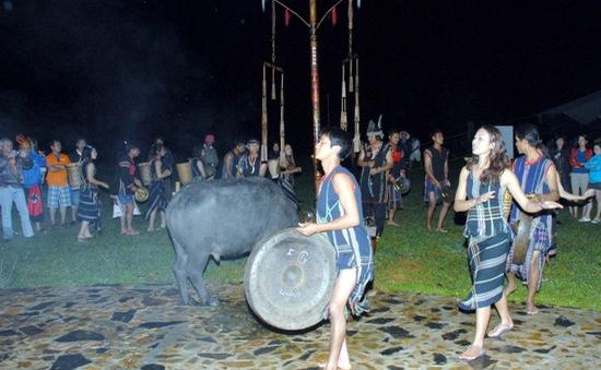 Lâm Đồng bỏ tục đâm trâu trong lễ hội