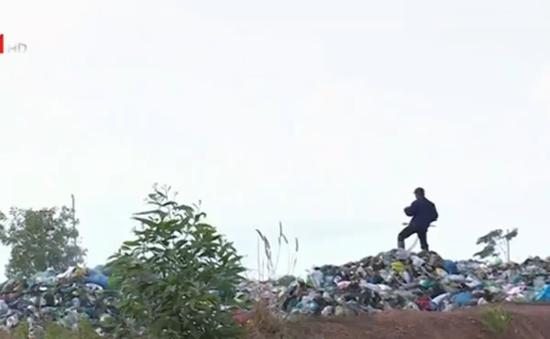 Bãi rác tạm bốc mùi, người chăn nuôi thiệt hại nặng