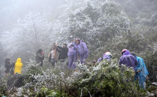 Các địa phương cảnh báo khách du lịch đến ngắm băng tuyết