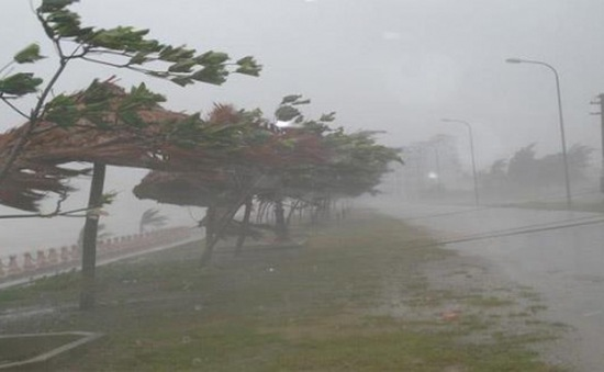 Nam Định, Thái Bình chuẩn bị phương án sẵn sàng ứng phó với bão số 3