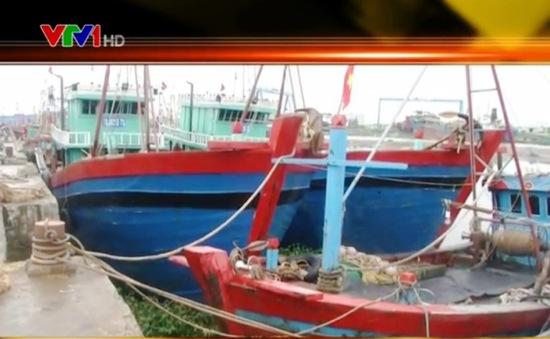 Thái Bình chủ động hạn chế thiệt hại về nông nghiệp trước bão số 3