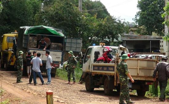 Yêu cầu xử lý nghiêm vụ lâm tặc cướp xe gỗ tang vật tại Gia Lai