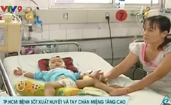 Bệnh nhân sốt xuất huyết và chân tay miệng tăng cao tại TP.HCM