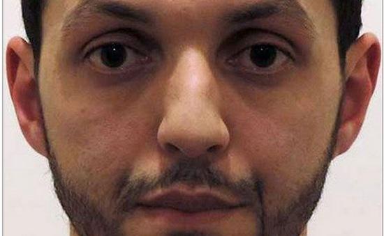 Thêm một nghi can vụ khủng bố Paris bị bắt giữ tại Bỉ