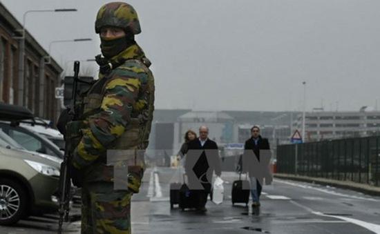 Bỉ thả nghi can liên quan đến loạt vụ tấn công khủng bố ở Brussels