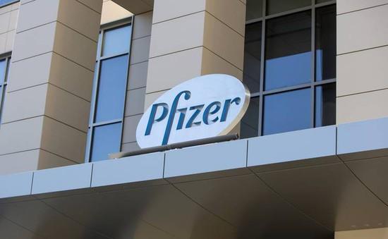 Pfizer đồng ý nộp phạt 785 triệu USD cho Chính phủ Mỹ