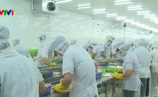 Thái Lan tiếp nhận lao động Việt Nam ngành đánh bắt cá và xây dựng