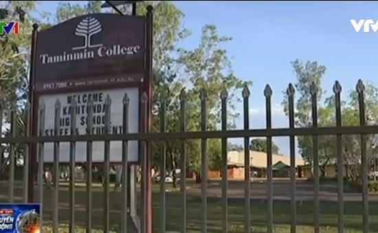 Australia: Nhóm thanh niên bịt mặt thả cá sấu vào trường học