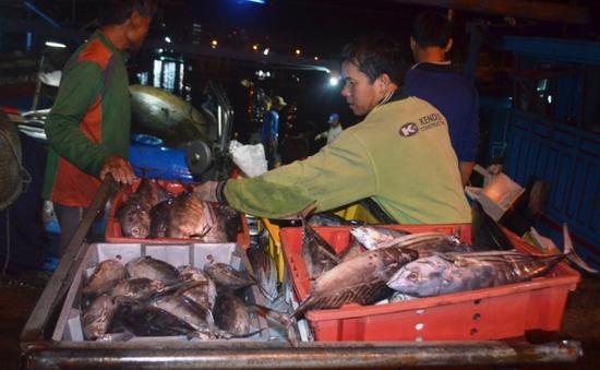 Chính phủ chỉ đạo biện pháp khắc phục thiệt hại cho ngư dân miền Trung
