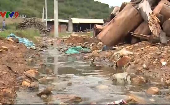 17 cơ sở chế biến cá cơm xả thải gây ô nhiễm ở Bình Thuận