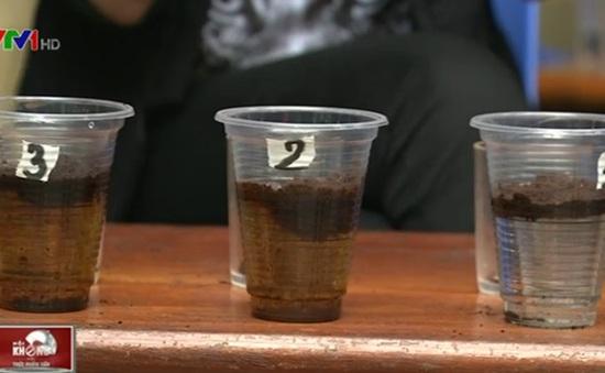 Mẹo phân biệt cà phê nguyên chất và pha tạp