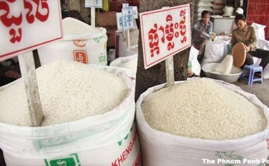 Campuchia thành lập Ủy ban đặc biệt ngăn chặn nhập lậu gạo