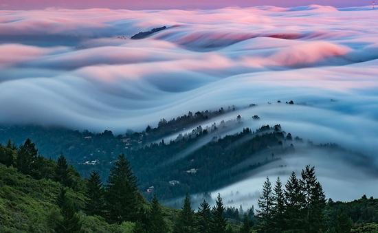 """""""Nghẹt thở"""" trước vẻ đẹp huyền ảo của San Francisco giữa làn sương mù"""