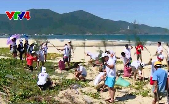 Đoàn thanh niên sinh viên kiều bào tham gia trồng cây tại Đà Nẵng