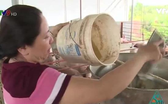 Nghệ An: 100% hộ chăn nuôi Diễn Châu cam kết không sử dụng chất cấm