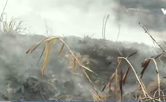 Cảnh báo cháy do đốt đồng ở vùng than bùn