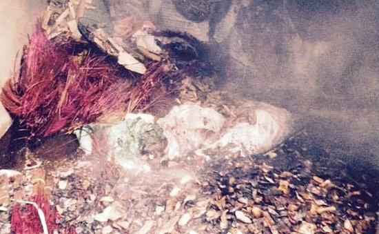 Cháy kho nguyên liệu trầm hương ở TT-Huế