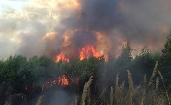 Cảnh báo cháy rừng cấp độ nguy hiểm tại Đồng Nai