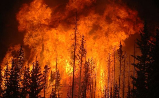 Kinh tế thế giới thiệt hại 71 tỷ USD vì rủi ro thiên tai