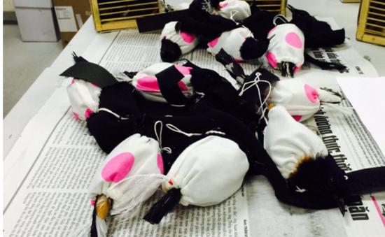 Phát hiện nam hành khách giấu nhiều chim quý cấm xuất khẩu trong ống quần